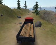 Conductor de camiones camino loco 3D